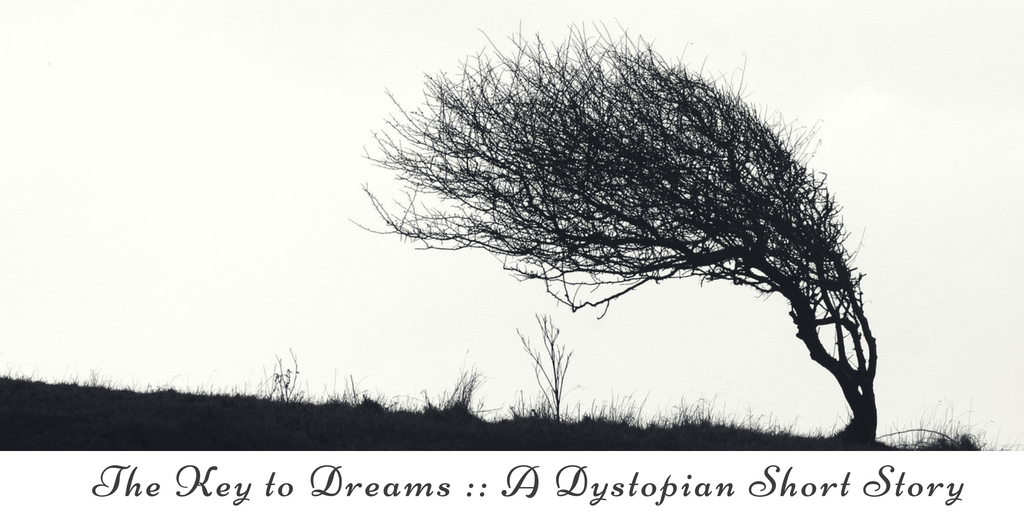 The Key to Dreams __ A Dystopian Short Story