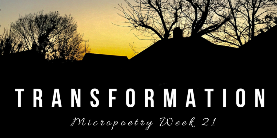 Poetry Archive :: Transformation