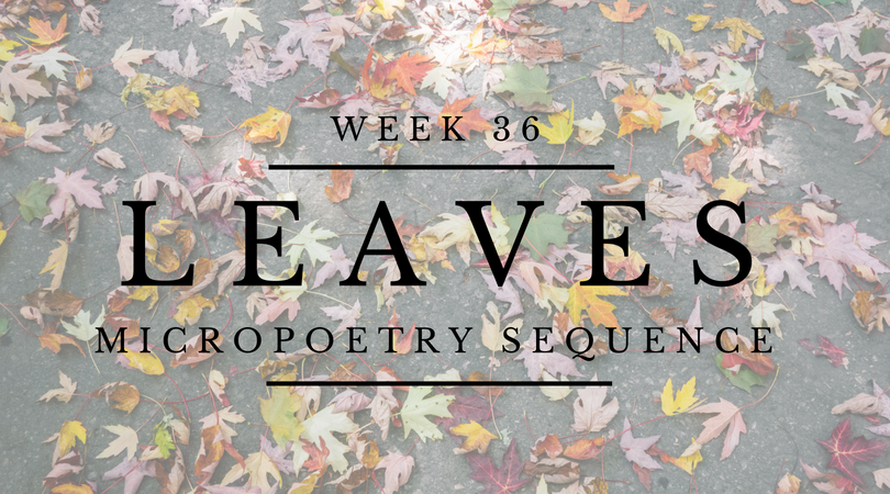 Poetry Archive :: Leaves