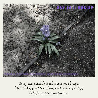 Day 16 __ Belief