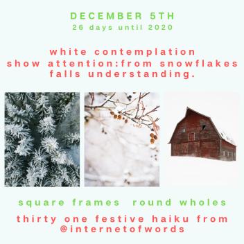 Square Frames Dec 5th